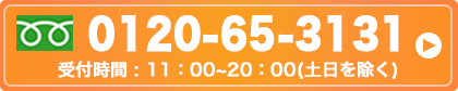 0120-65-3131