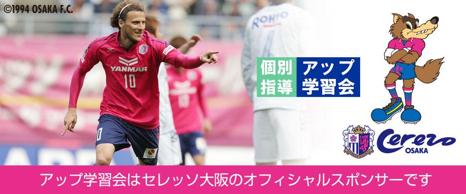 セレッソ大阪のスポンサー活動